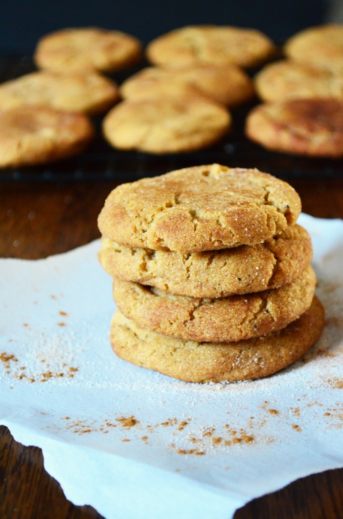 brownbuttersnickerdoodle-1